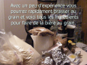 Brassage au grain